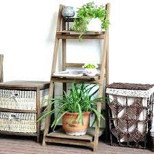 plant rack indoor