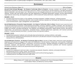 Make A Professional Resume Online Free Resume Template Excellent Build Online Printable A Professional 52