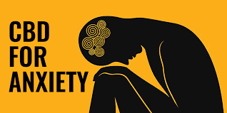 Image result for cbd for anxiety