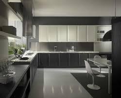Modern Grey Kitchen Cabinets Kitchen Dark Grey Kitchen Cabinets 1000 Images About Gray