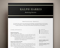 Professional Marketing Resume Template Cv Template Minimalist Resume Three Page Resume Curriculum Vitae Lebenslauf Vorlage Digital