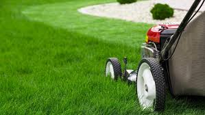 Mowmagic An On Demand Lawn Mowing Service Launches In St