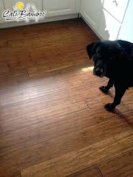 best flooring for pets. Laminate Flooring With Dogs Antique Java Narrow Plank Click Lock Bamboo Sample . Best For Pets