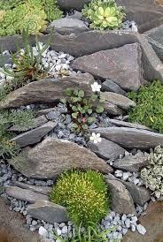 41 awesome diy rock garden ideas for