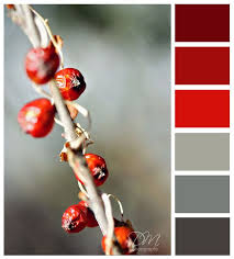 Winter Berries - red & grey color palette