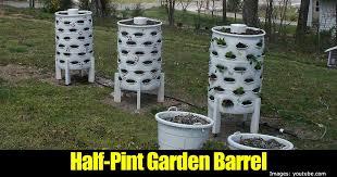 barrel garden. Half-pint-garden-barrel-43020151362 Barrel Garden N