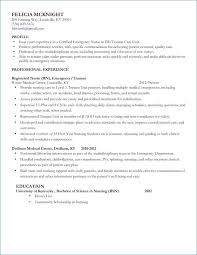 Additional Information On Resume Examples From Picture A Resume