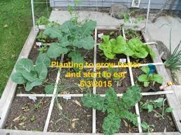 garden grants. We Support Gardening In The Community! Grants Are Available For Local Gardeners Who Interested Exploring Square Foot Gardening. Garden S