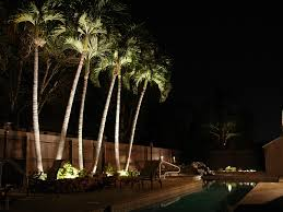 exterior large size nitelites outdoor lighting of sarasota to exhibit in the gulf lap pool