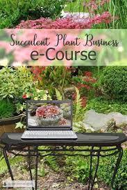succulent plant business e course