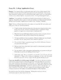 College Application Essay Template High School Application Essay Samples High School