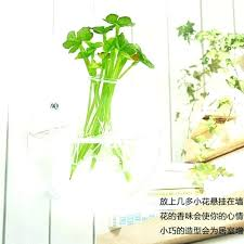 hanging wall vase wall vases for flowers decorative wall hanging wall vase clear glass vessel wall hanging wall vase