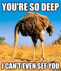 Reflecting Ostrich memes | quickmeme via Relatably.com