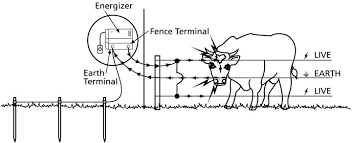 wiring diagram for electric fence the wiring diagram building your electric fence grange co op wiring diagram
