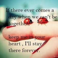 Image result for ladybug miss you