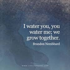 Water Quotes Interesting 48 Water Quotes QuotePrism