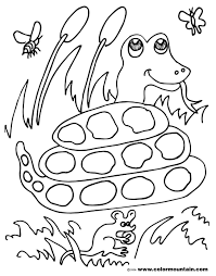 Small Picture What Eats Snakes Coloring Coloring Pages