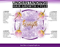 Hair Growth Length Chart Understanding The Hair Growth Cycle Longing 4 Length