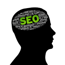 SEO kowledge, SEO brain, SEO and Brain, brain of SEO