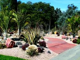 view into the madagascar spiny forest at the los angeles county arboretum botanic garden