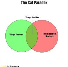Venn Diagram Meme The Cat Paradox In A Venn Diagram Diagram Paradox Png Photo