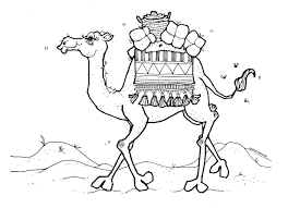 Small Picture Printable Camel Coloring Pages With Camels esonme