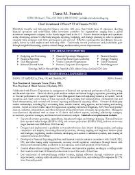 Financial Resumes Examples Vp Finance Resume Examples Examples Of Resumes 19