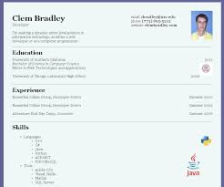 Official Resume Format Mesmerizing Ficial Resume Format How To Make An Official Resume Resume Samples