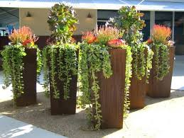 indoor garden pots ideas fall pot plants potted