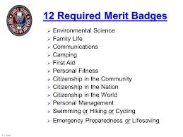 Boy Scout Personal Fitness Merit Badge Worksheet - Checks Worksheet