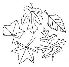 Printable Leaf Coloring Pages Coloringmecom