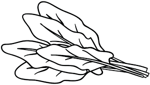 Vegetables Coloring Pages Vegetable Coloring Pages Root Vegetables