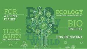 Environmental Ecology Introduction Videos Concepts And Questions