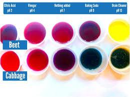 Bicarbonate Indicator Colour Chart Natural Ph Indicators Make A Ph Indicator Using Beetroot Or