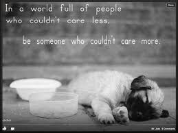 Care More Remember To Be Compassionate Animals Dogs Animal Quotes