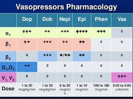 Vasopressors Presentation_final
