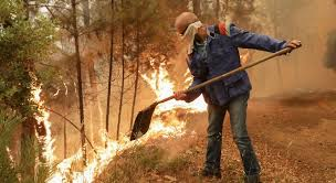 Resultado de imagem para fotos ou imagens dos incêndios em Pedrógão Grande e Góis