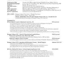 Attractive Computer Skills List Resume Sample Adornment