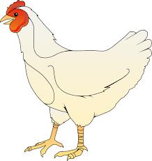 chicken clipart. Wonderful Chicken Chicken Clipart  Clip Art  Vector Online Royalty Free U0026  Public  For D