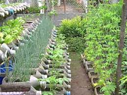 risers in container gardening you