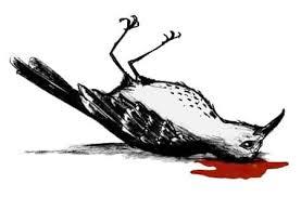 harper lee s to kill a mockingbird racism discrimination social  harper lee s to kill a mockingbird racism discrimination social class schoolworkhelper