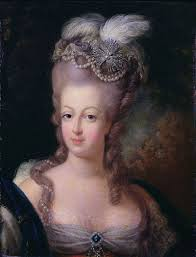 describe the role of women in the french revolution the women of  the women of the french revolution a guest post by stew ross marie antoinette queen of