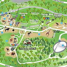 zoo map template. Fine Map Printable Zoo Map With Template P