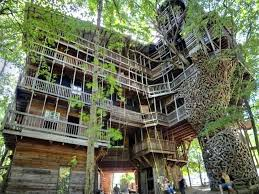 cat treehouses the massive took years and to build outdoor cat tree house uk cat treehouses exotic vacations outdoor cat tree house uk