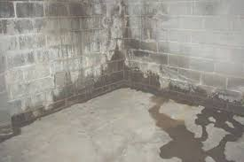water seeps through basement wall nice design ideas water seeping through basement walls proofing intended for