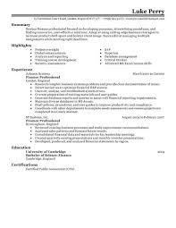 Executive Summary Resume 7 Examples Of A On Cv Template Free Ex