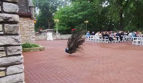 Wedding At Meyer S Castle Northwest Indiana Harpist The