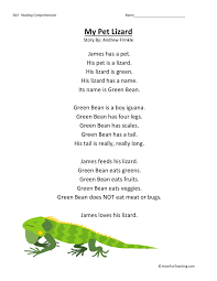 Comprehension Worksheet - My Pet Lizard