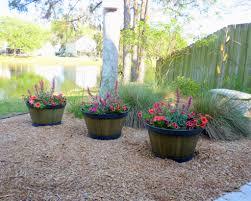 tree plants flower plant pots new wooden barrel planter ideas simple half