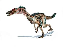 Choose from a curated selection of dinosaur photos. Baby Raptor Fossil Found In Alaska Nature And Wildlife Discovery